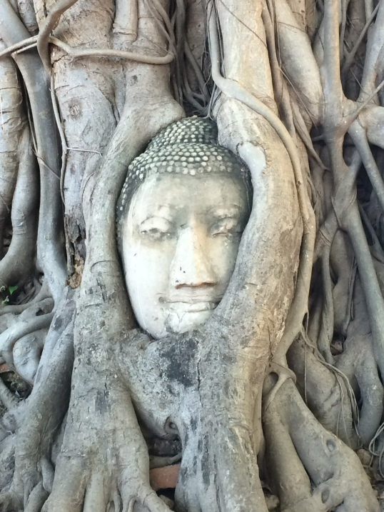 Ayutthaya (148)