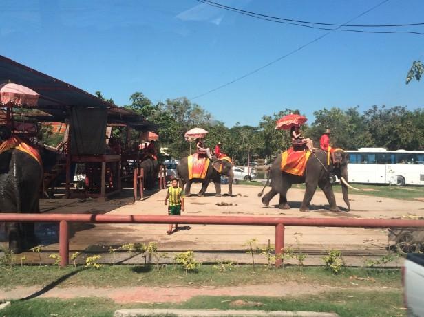 Ayutthaya (167)