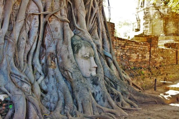 Ayutthaya (87)